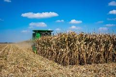 Ernten von Mais in Indiana lizenzfreie stockbilder
