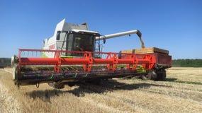 Erntet Erntemaschine auf dem Gebiet Stockfoto