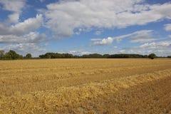 Erntezeit im Tal von York Stockbilder