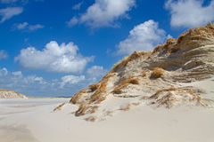 Eroded dunes Royalty Free Stock Photography
