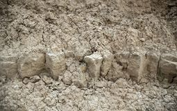 Eroded earth texture royalty free stock images