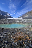 Eroded Landscape Columbia Icefield Stock Photo