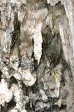 Eroded Limestone Royalty Free Stock Photo