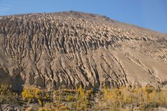 An eroded mountain with yellow leaves poplar trees. royalty free stock images