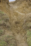 Eroded mud Royalty Free Stock Photography