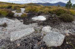Eroded Peat Bog with Granite Gravel. Cairngorm Mountains, Scotland royalty free stock images
