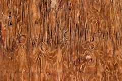 Eroded Plywood Royalty Free Stock Images