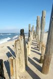 Eroded poles on beach. Royalty Free Stock Photo
