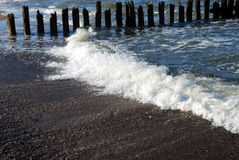 Eroded poles in the sea. A row of wooden eroded poles in the sea Stock Photo