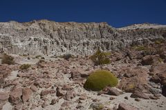 Eroded river valley on the Altiplano of Chile. Eroded rock formations along Quebrada Chuba, a river valley high on the Altiplano of northern Chile in Lauca royalty free stock photo