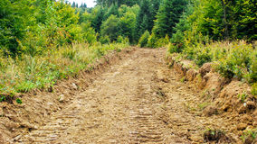 Eroded road. Disproportionate timber harvesting causing local environmental problems that cause erosion Royalty Free Stock Image