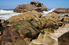 Eroded rock covered of seamoss Royalty Free Stock Photos