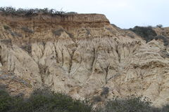 Eroded Rock at Torrey Pines State Park Stock Image