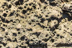 Eroded rocks with holes Stock Photography