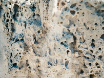 Eroded rocks with holes beside the sea Stock Photos