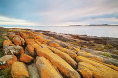 Eroded Rocky Coastline Royalty Free Stock Photography