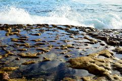 Eroded Sandstone Rock Pools Royalty Free Stock Photo