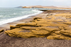 Eroded sandstone shore Stock Photo