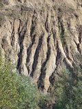 Eroded soil. Pattern on the hill Stock Images
