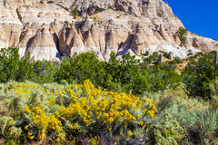 Eroded Tent Rocks. View Of Eroded Volcanic Formations With Yellow Rabbitbrush In Foreground, Tent Rocks National Monument, New Mexico Royalty Free Stock Photo