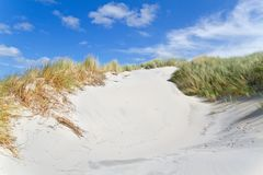 Eroded, windblown dune Royalty Free Stock Image
