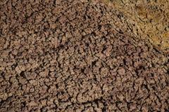 Erodera texturer av Badlandsnationalparken South Dakota royaltyfria foton