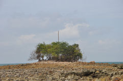 Eroderad ö under lågvatten Arkivfoton
