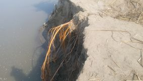 Eroderad Indus River banksikt royaltyfri foto