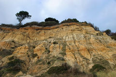 Eroding Cliffs. Sandstone cliffs, Dorset, England royalty free stock photo
