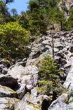 Erosão glacial Fotografia de Stock Royalty Free