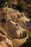 Erosión de la barranca de Bryce Fotos de archivo libres de regalías
