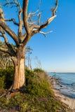 Erosión de playa Fotos de archivo