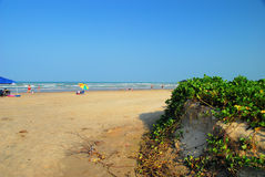 Erosión de playa del huracán Imagen de archivo libre de regalías