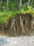 Erosión a lo largo de la línea de la playa del lago Ontario Fotos de archivo libres de regalías