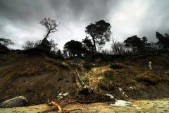 Erosie van Baltische kust na onweren Stock Afbeelding