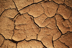 Erosion. Closeup shot of cracked dried mud stock images