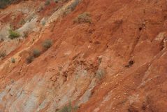 Erosion. The disastrous effects of erosion on deforested soil Royalty Free Stock Photos