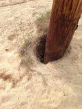 Erosion around the pole Royalty Free Stock Photo
