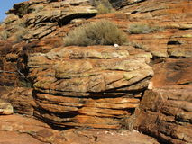 Erosion of the Australian red rocks Royalty Free Stock Images