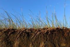 Erosion av jorden royaltyfria foton