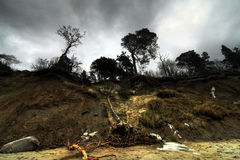 Erosion of Baltic coast after storms Stock Image