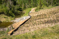 Erosion control on a slope landscape project. Erosion control on a slope with straw sock catch, silt fence, straw net, wooden stick guard fence Stock Photography