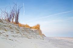 Erosion of dunes Stock Images