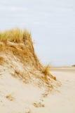 Erosion of dunes Stock Image