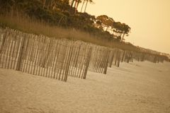 Erosion fence on deserted beach Royalty Free Stock Photo