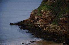 Erosion. Landscape sea scape, cliffs, British coastline, North Sea Royalty Free Stock Photography