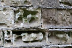 Erosion of a Limestone Building Stock Images