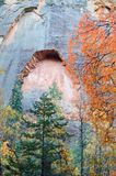 Erosion in Process. Fall foliage frames an emerging alcove in a rock wall Royalty Free Stock Image