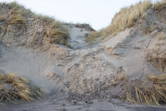 Erosion on a sand dune Stock Photo