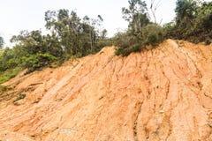 Erosione del pendio con il crollo della terra al pendio nel environme tropicale Immagini Stock
